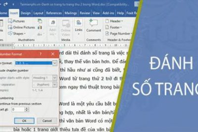 Hướng dẫn cách đánh số trang bắt đầu từ trang 2, đánh số trang bỏ trang đầu